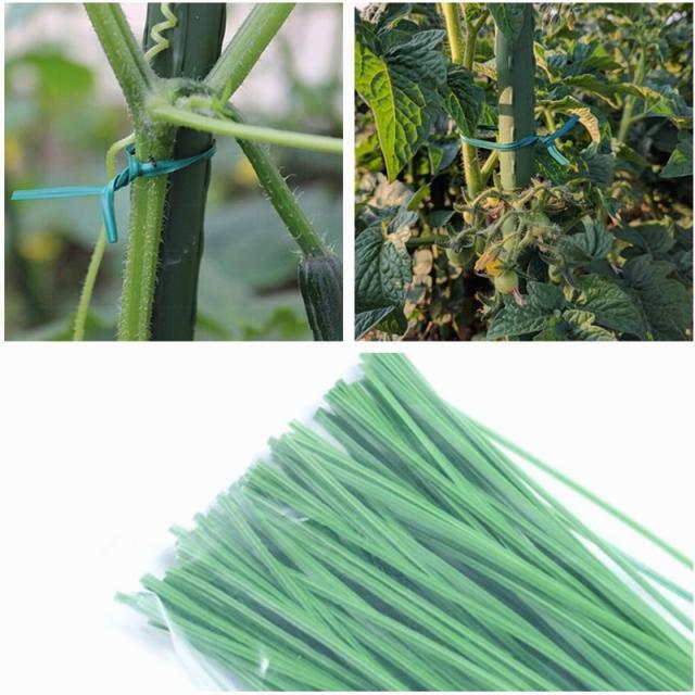 Каркасы и поддержки для растений